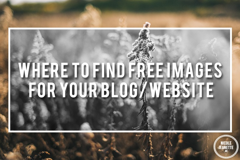 Where to find free images for your Blog/Website