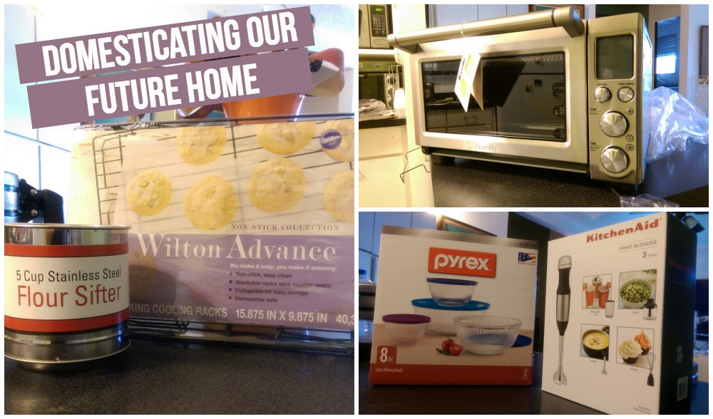 Domesticating Our Future Home